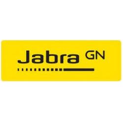 Jabra Jabra EVOLVE 20 (4999-823-309)